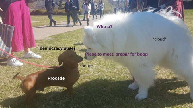 Shoobie meets susej; a boop ensues